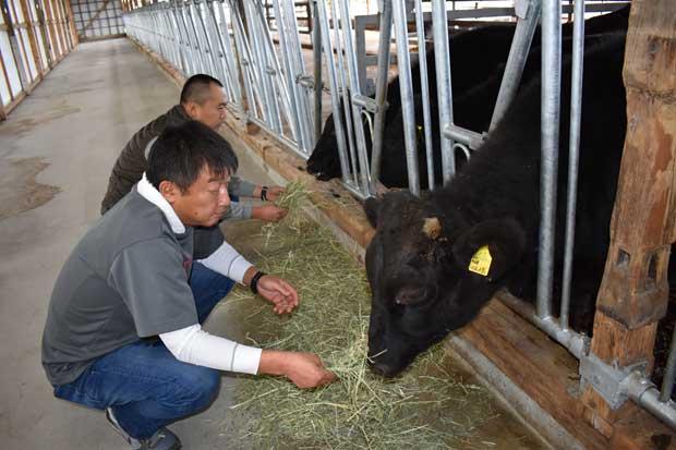 日本家庭越來越少吃和牛
