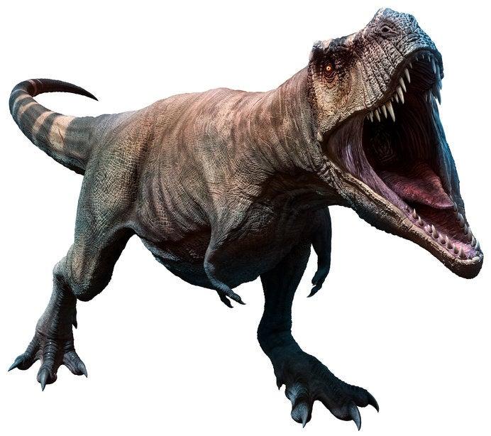 写真・図版 | 恐竜に会いに行こ...